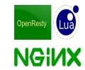 用Nginx with Lua代替Varnish