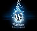 偶也升级到Wordpress3.5~