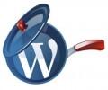 总结下wordpress数据库优化