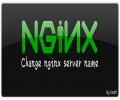 如何修改Nginx服务内部默认名称为任意名字